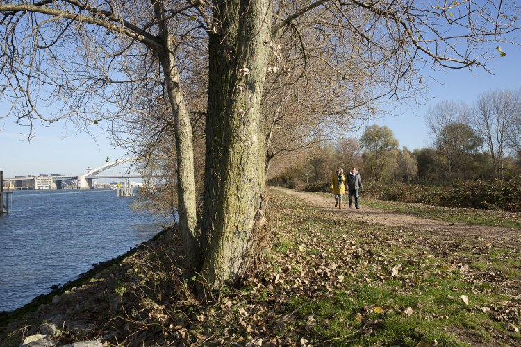 Wandelen langs de Nieuwe Maas Oud-IJsselmonde
